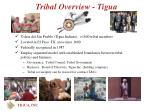 tribal overview tigua