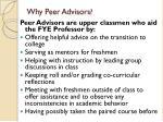 why peer advisors