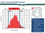 pilot financial model output