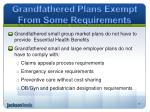 grandfathered plans exempt from some requirements