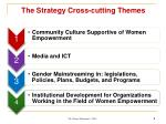 the strategy cross cutting themes