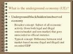 what is the underground economy ue