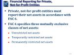 financial reporting for private not for profit entities