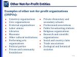 other not for profit entities