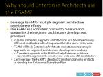 why should enterprise architects use the fsam