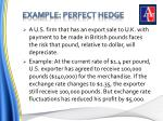 example perfect hedge