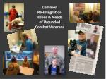 common re integration issues needs of wounded combat veterans