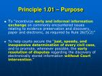 principle 1 01 purpose