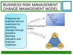 business risk management change management model