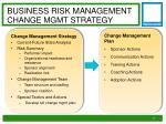 business risk management change mgmt strategy