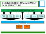 business risk management our structure