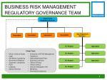 business risk management regulatory governance team