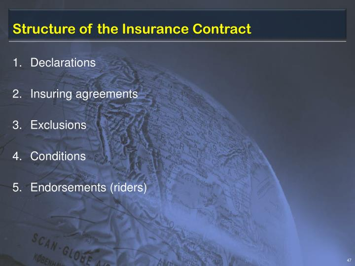 Structure of the Insurance Contract