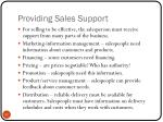 providing sales support