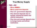 true money supply