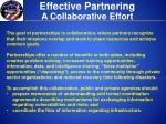 effective partnering1
