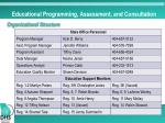 educational programming assessment and consultation3