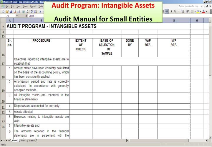 Audit Program: Intangible Assets