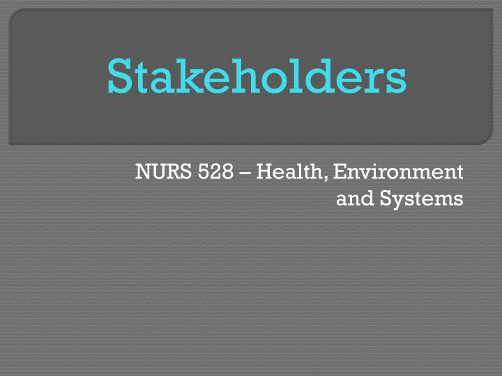 nurs 528 health environment and systems