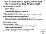 what provider delivery system and payment reforms are being tested implemented