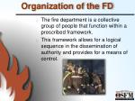 organization of the fd