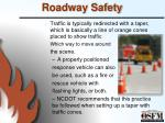 roadway safety1