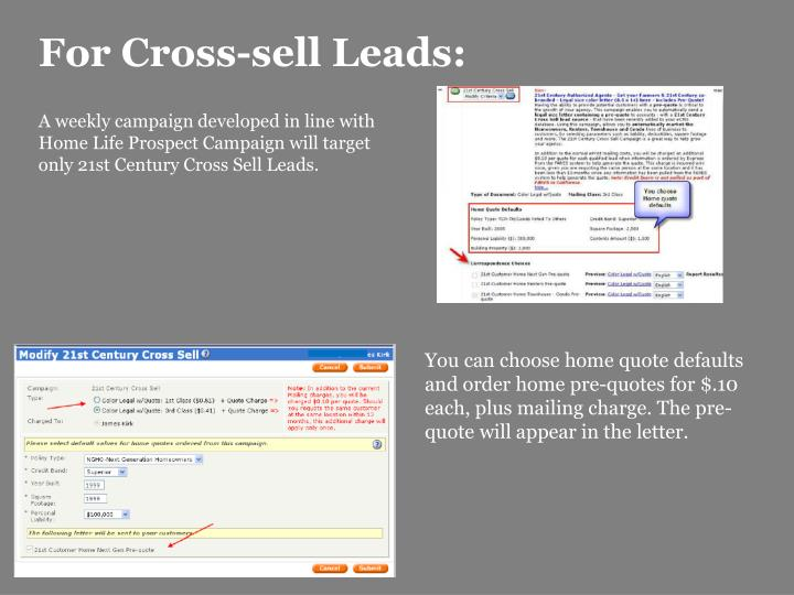 For Cross-sell Leads: