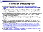 information processing view1