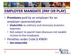 employer mandate pay or play