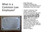 what is a common law employee