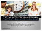 top tax issues for small business what will affect businesses this year and beyond