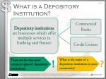 what is a depository institution