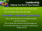 leadership helping you out of your cocoon