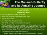 the monarch butterfly and i ts amazing journey