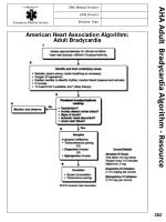aha adult bradycardia algorithm resource