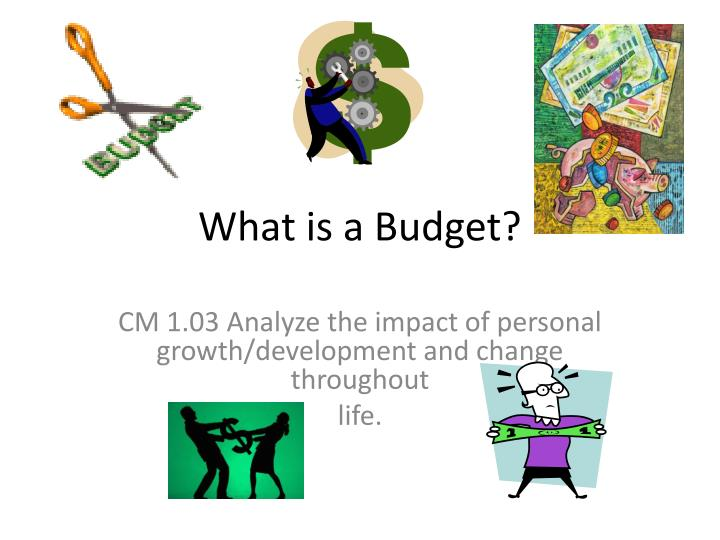 what is a budget n.