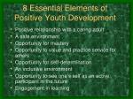 8 essential elements of positive youth development