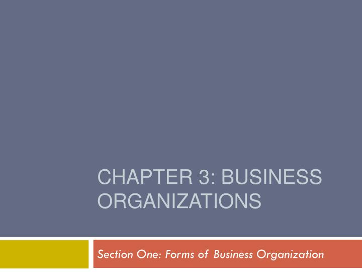 chapter 3 business organizations n.