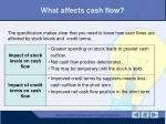 what affects cash flow