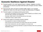 economic resilience against disaster