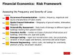 financial economics risk framework