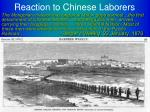 reaction to chinese laborers