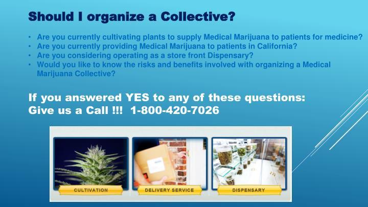 Should I organize a Collective?