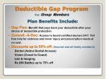 deductible gap program