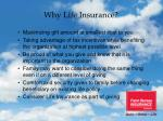 why life insurance