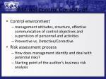 internal control consists of