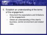 the audit process3
