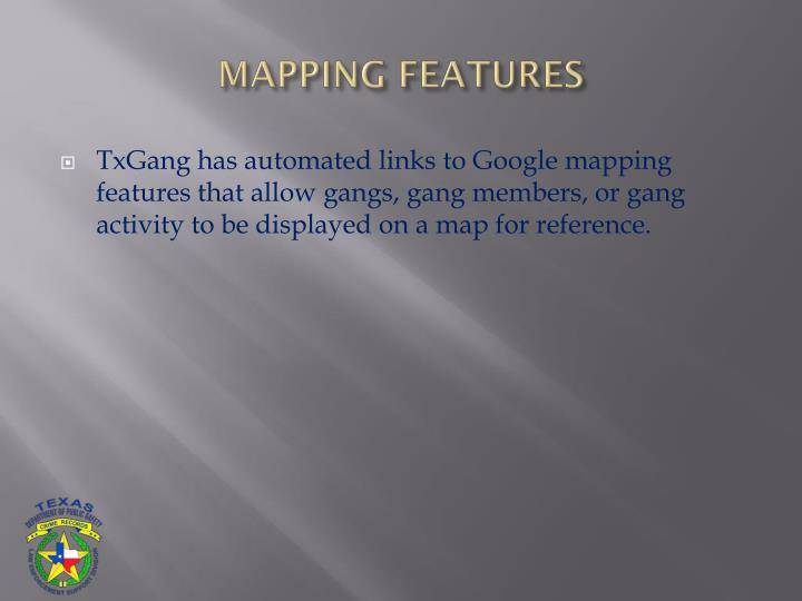 MAPPING FEATURES