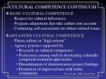 cultural competence continuum2
