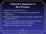cultural competence is best practice